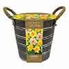 Outdoor Metal Bucket Narcissi Planter