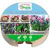 Plant o Mat Tulip and Muscari Planting Kit
