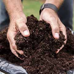 Premium Professional Compost Blend - 100L plus fertiliser plus free p&p