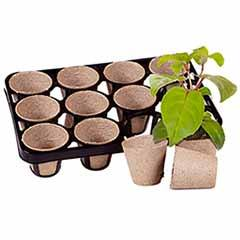 Skelly Tray x 3 and 36 Jiffy Bio Pots