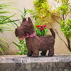 Scottie Dog Planter