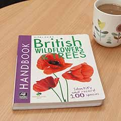 Handbook - British Wildflowers and Trees