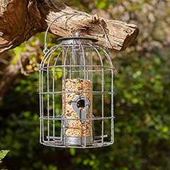 Squirrel Resistant Seed Feeder