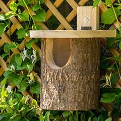 Natural Log Robin Nesting Box