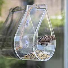 Dewdrop Window Feeder
