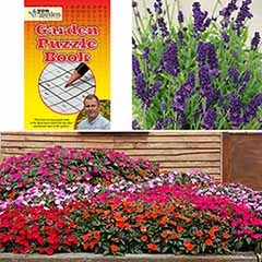 Puzzle Book, Busy Lizzie and Lavender Bundle