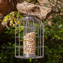 Squirrel Proof Peanut Bird Feeder