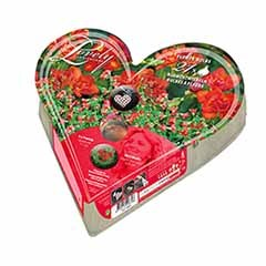 Heart-O-Mat Gift Bulb Kit