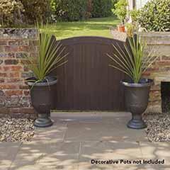 Pair 80-100cm Cordylines 14cm pot