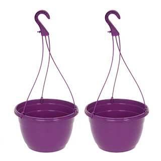 Purple Hanging Baskets - Pair