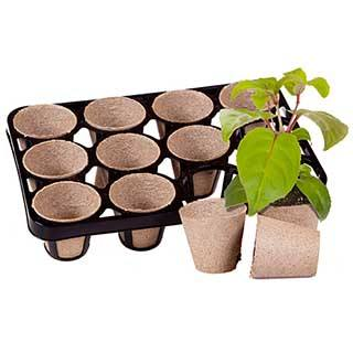 Skelly Tray and 12 BioPots