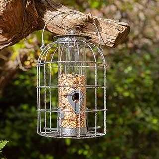 Squirrel Resistant Seed Feeder
