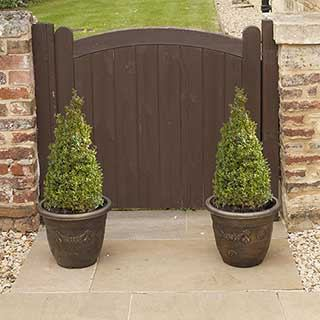 Pair Of Buxus Box Pyramids