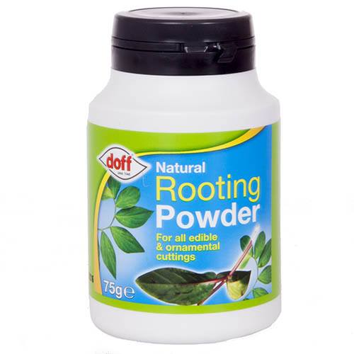 Natural Rooting Powder 75g