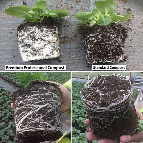 Twin pack 40L Professionall Compost handy size