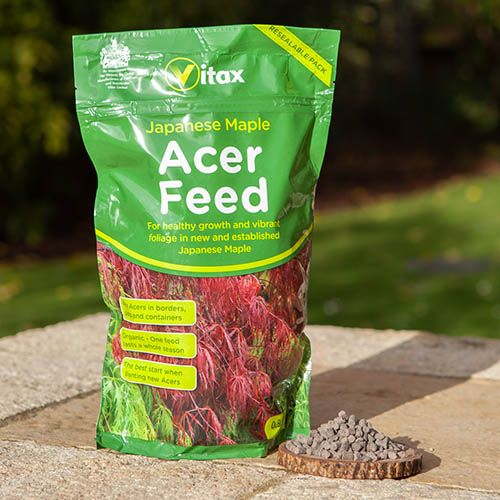 Vitax Japanese Maple Acer Feed 900g