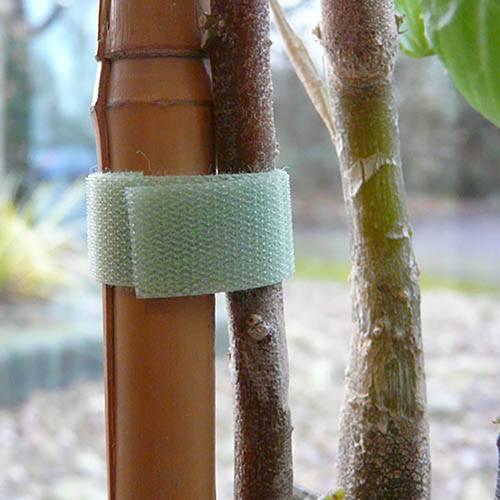2 rolls of Quick Wrap Plant tape 7.5M