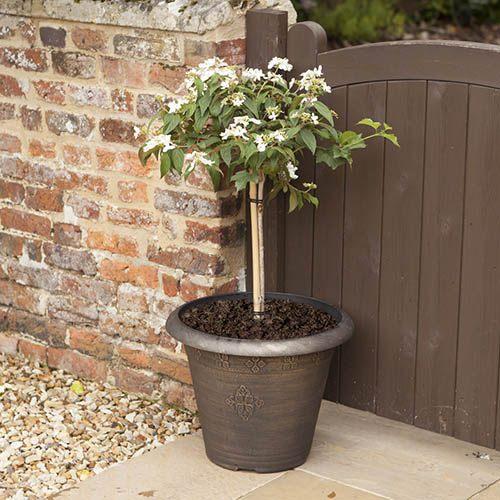 Medley Round Planter 45cm (18in) Black Bronze