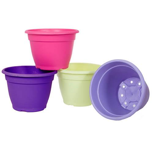 Set of 4 Bold & Bright Planters