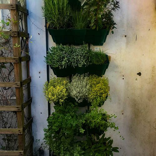 Vertical Wall Planter System