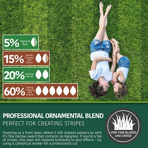 Luxury Front Lawn, Premium Professional Grass Seed Mix, 1kg
