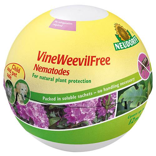 VineWeevilFree Nematode Treatment