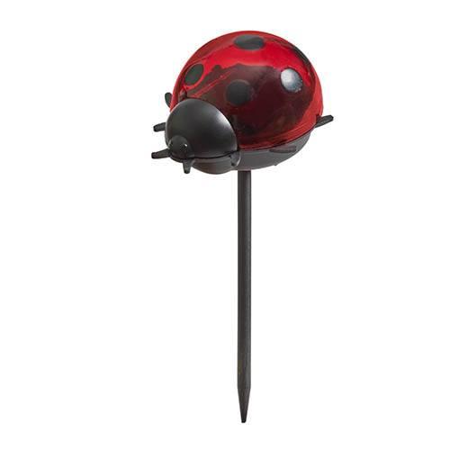Ladybird Stake 6 pack