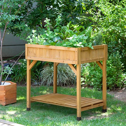 Herb Garden - Natural