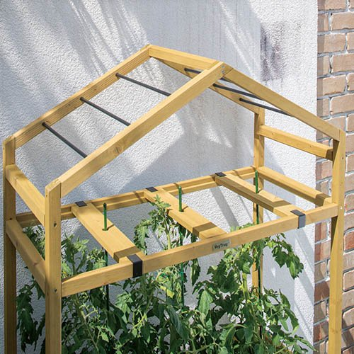 Tomato Greenhouse & PE Cover - Natural
