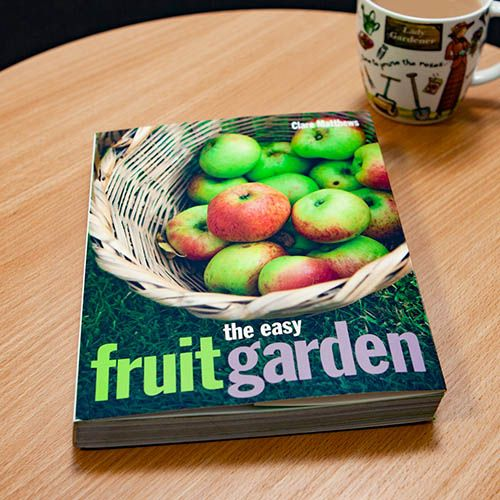 The Easy Fruit Garden