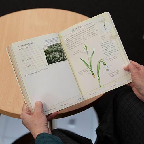 Handbook - British Wildflowers and Trees