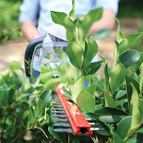 Greenworks 24V Cordless Hedge Trimmer with 2Ah Battery and Charger