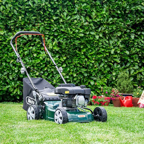 Classic 41cm (16) Petrol Rotary Lawnmower