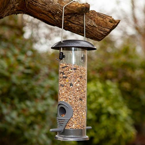Premium Bird Feeder and Seed