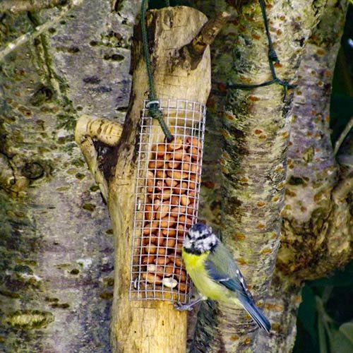 Handmade Wooden Bird Feeder