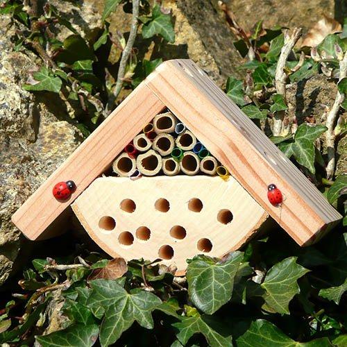 Minibugs Bobbys Bug House