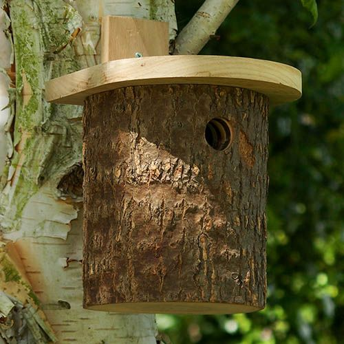 Natural Log Tit Nesting Box