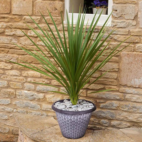 Pair of 13 White-Washed Wicker Effect Planters