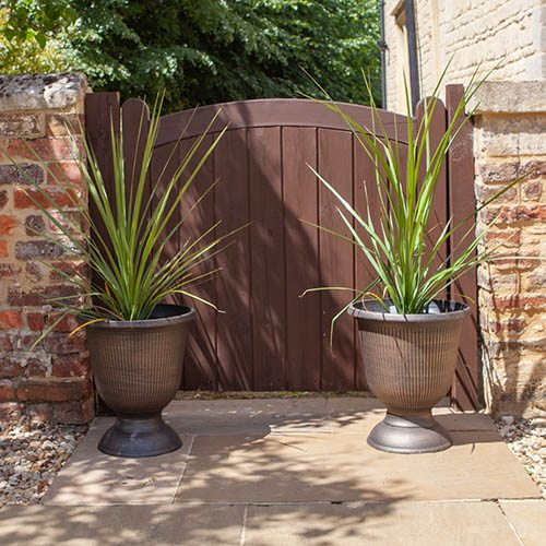 Pair of Vertical Stripe Urns and Free Cordylines