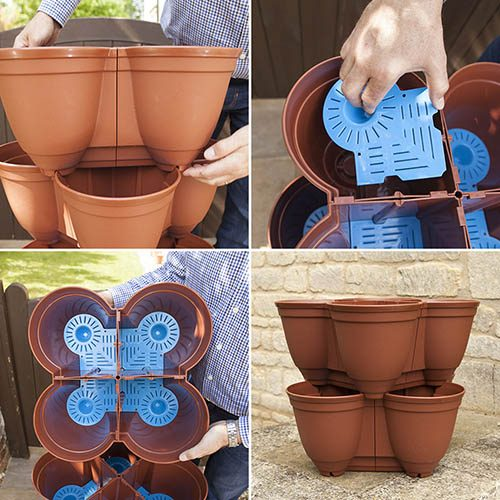 Grow Your Own Strawberry Growin-Pods - 8 Pots with 8 Plants