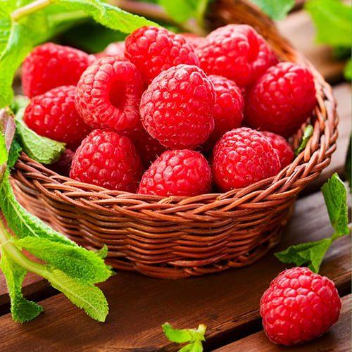 Raspberry Polka