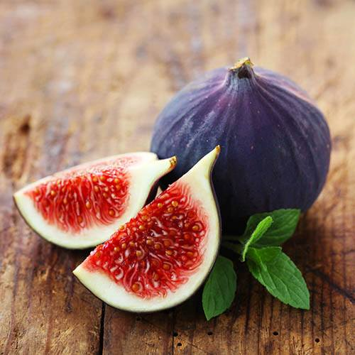 Fig Rouge de Bordeaux
