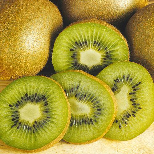 Self-fertile Kiwi Jenny