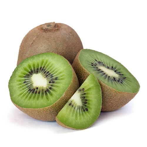 Actinidia deliciosa - Kiwi Fruit Jenny 9cm
