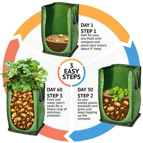 Patio Potato Grow Bag Kit