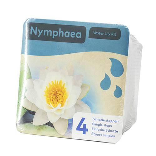 Water Lily Planting Kit - White