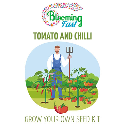 Tomatoes and Chillies Seed Kit