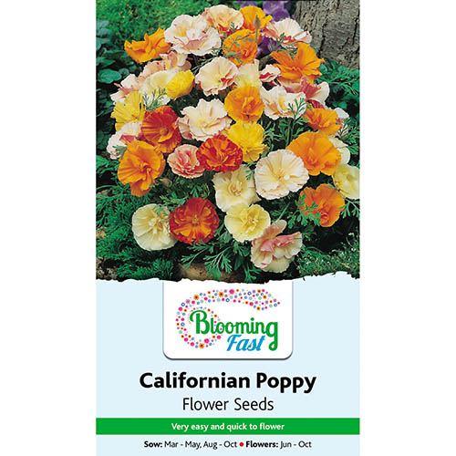 Californian Poppy Monarch Art Shades Seeds