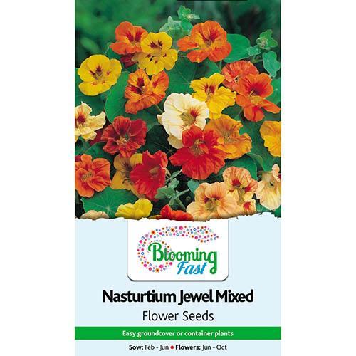 Nasturtium Jewel Mixed Seeds