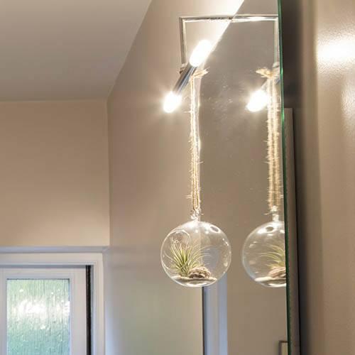 Hanging Globe Air Plant Terrarium